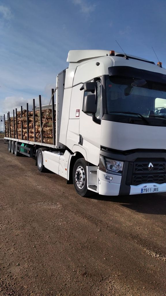 camión transporte de troncos de madera
